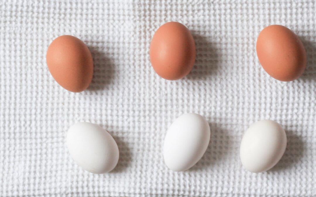 Drei weiße und drei braune Eier liegen auf einem Tuch