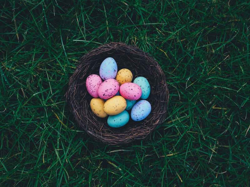 Osternest mit bunten Eiern, das im Rasen liegt